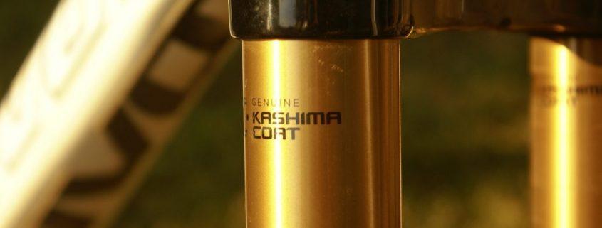 kashima coating singapore
