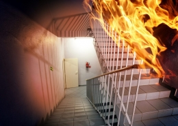fire retardant paint in action in a staircase